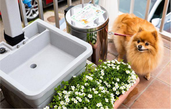 ペットちゃん用の足洗い場