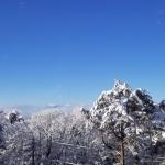 久しぶりの雪!!
